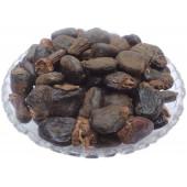 Bhilawa Seeds - Bilava Beej - Bhilava - Bilawa