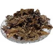 Chadila - Charila - Chareela - Stone Flower - Patthar Phool - Dagad Phool - Parmelia perlata