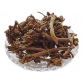 Akarkara Roots - Anacyclus pyrethrum - Pellitory Roots