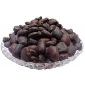 Imli Beej Chota - Emli Seed Small - Tamarind Seeds Small - Tamarindus indica