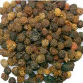 Kaknaj - Kaaknaj - Physalis alkekengi Linn – Bladder Cherry