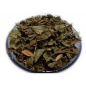 Mehndi Patta - Mehendi Patta - Heena Leaves - Henna Leaves
