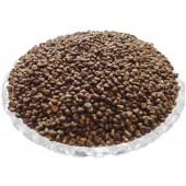 Mushk Dana - Musk Dana - Mushkdana - Muskdana - Ambrette Seed - Abelmoschus Moschatus