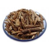 Atish Mithi - Ativisha Sweet - Atiwisha - Ateesh - Aconitum palmatum