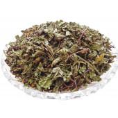 Pudina Dry - Dried Podina - Sookha Pudina - Sukha Podina - Mint - Mentha piperita