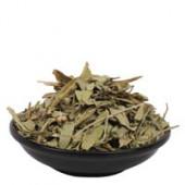 Rasna Leaves - Rasnai Leaf - Ray Sanay Patta - Rai Senna - Pluchea Lanciolata