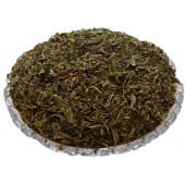 Stevia Leaf - Madhu Tulsi - Mithi Tulsi - Stivia Leaves - Stevia rebaudiana