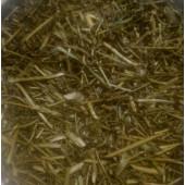 Babuna Panchang - Matricaria chamomilla