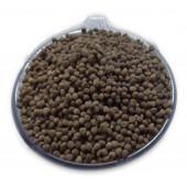 Beej Bhindi - Okra Seeds - Ladyfinger Seeds - Lady Finger Seeds - Abelmoschus esculentus