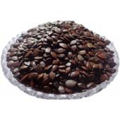 Subabul Seeds - Safed Babool Beej - Babul Beej - Leucaena leucocephala