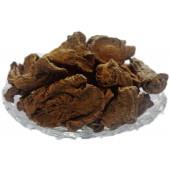 Behman Red Surkh - Bahman Lal - Salvia haematodes