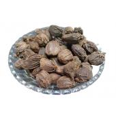 Elaichi Badi - Ilaichi Big - Black Cardamom - Elettaria Cardamomum