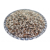Nirgundi Seeds - Sambhalu Beej - Chaste Seeds - Nirgund - Vitex negundo