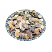 Edible Harshringar Seeds - Beej Harshingar - Paarijaat Beej - Parijat Seeds - Nyctanthes Arbor Tristis
