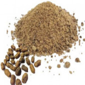 Jamun Seeds Powder - Jaamun Guthli Powder - Syzygium Cumini - Black Plum