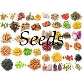 Jadi Buti - Raw Herbs Seeds