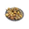 Kateri Fruit - Katehli Fal - Solanum Xanthocarpum - Bhatkatiya - Kantakari - Katehri Phal