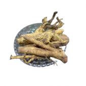Saptarangi Root - Saptrangi Jadd - Saptaranj - Salacia oblonga