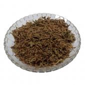 Shankhapushpi - Shankhawali - Sankhpushpi - Convolvulus Pluricaulis