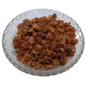 Bijabol - Hirabol - Murmukhi - Mur Makki - Commiphora myrrha Nees