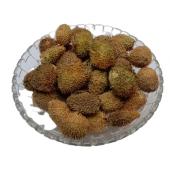 Bindaal Doda - Devdali - Luffa Echinata
