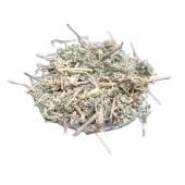 Afsanteen - Afsantin - Artemisia Absinthium - Wormwood