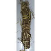 Phalsa Chaal - Falsa Chhal - Grewia Asiatica