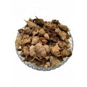 Bitter Gourd Small - Karela Chota - Momordica charantia